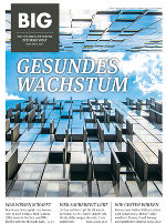 BIG Gesundes Wachstum November 2017
